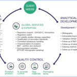 Skyepharma Analytical Services: Specialized teams