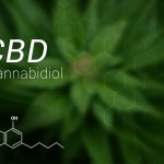 Uses of cannabinoids