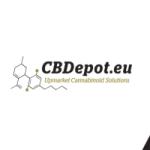 CBDepot history 2020