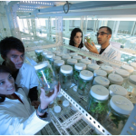 Evolve champions research talent in community development initiatives