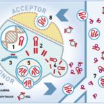 TAmiRNA microRNA biomarker analysis