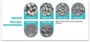 SEM images of MEGGLE's various InhaLac® dry powder inhaler lactose grades