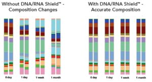 Figure 1. Microbial composition of stool is unchanged after one month at ambient temperature with DNA/RNA Shield™. Stool samples suspended in DNA/RNA Shield™ and stored at room temperature were compared to stool without preservative for one month. They were sampled at the indicated time points and processed with ZymoBIOMICS™ DNA Mini Kit. The extracted DNA was then subjected to microbial composition profiling via 16S rRNA gene targeted sequencing. Samples stored with DNA/RNA Shield™ had a constant microbial composition while the samples stored without DNA/RNA Shield™ shifted dramatically