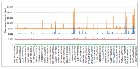 Example 1: Epitope signal hits of Mycoplasmal surfome derived peptides arranged in high density peptide array immune analytics by use of serum of infected animal's in life vaccine development.