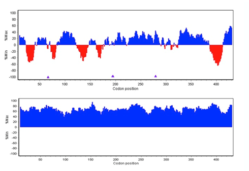 Example 2:  Course of relative codon index values along a bacterial gene sequence. In red: mid to low frequency codons, in blue: higher to high frequency codons (upper image) pre codon calculations (lower image) after codon calculations