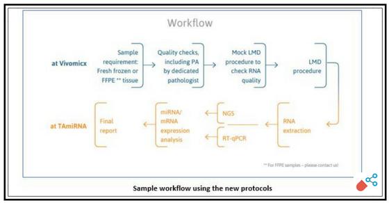 Tamirna And Vivomicx Revolutionize Drug Discovery With