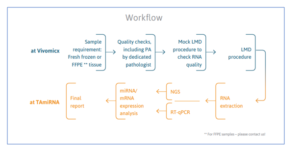 Sample workflow using the new protocols