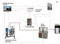 Applikon Biotechnology's leading role in continuous processing