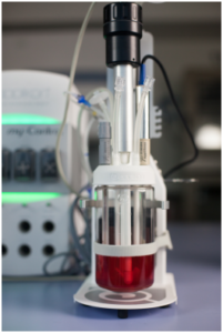AppliFlex ST; Applikon single-use stirred tank bioreactor