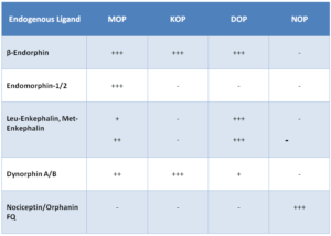Table 2: Selectivity/Affinity of Endogenous Opioid Peptides.  (Adapted from J.McDonald and D.Lambert, Opioid receptors. BJA Education 15, 219-224 (2014) )
