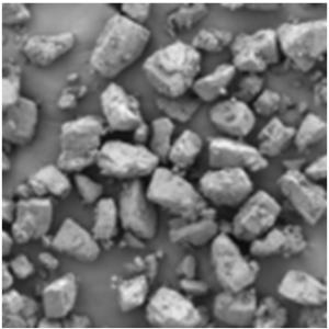 InhaLac® 230 microscopic image