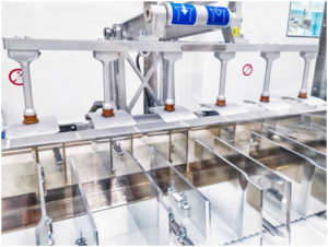 Secondary packaging - Horizontal cartoner and casepacker with serialization and aggregation included