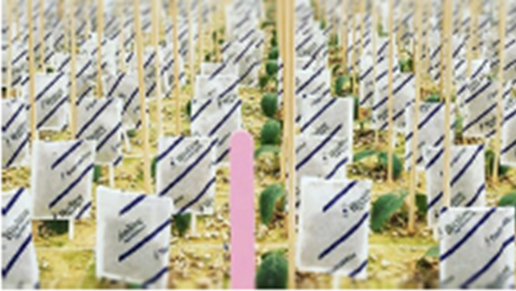 Case Study: Rotronic RMS with robust HygroClip probes meet biocontrol challenges at Bioline