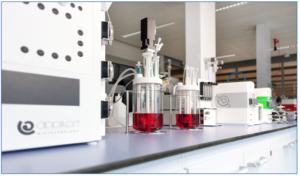 Applikon's AppliFlex ST 3L three litre version meets lab-scale bioreactor needs
