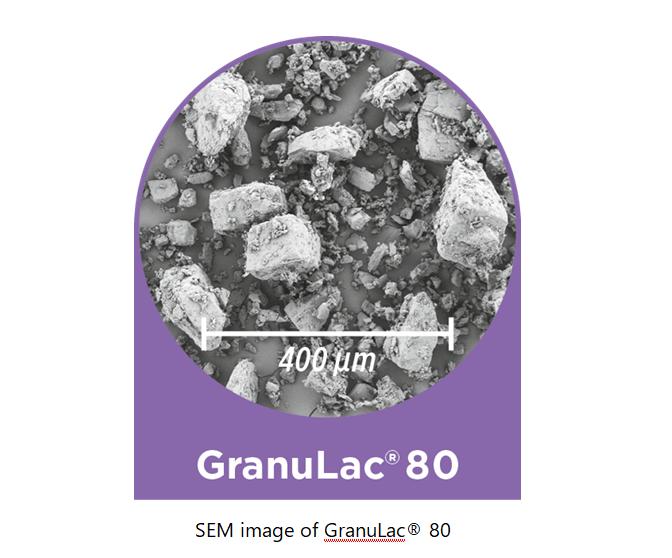 MEGGLE GranuLac® 80 milled alpha-lactose monohydrate grade