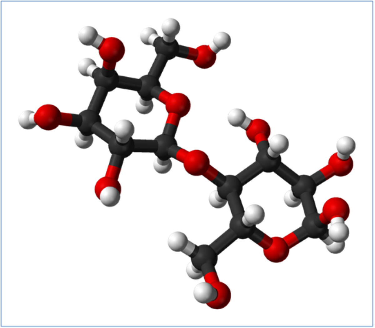 MEGGLE lactose advantages in pharma applications