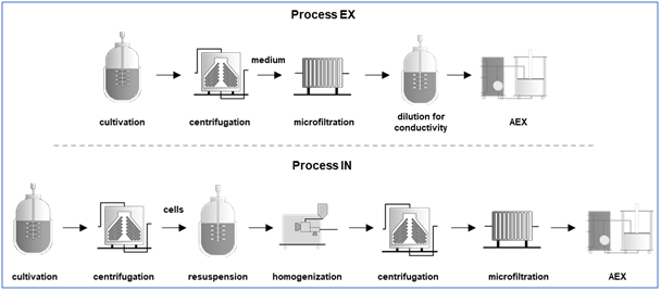 New study shows ecological benefits for enGenes Biotech X-press technology