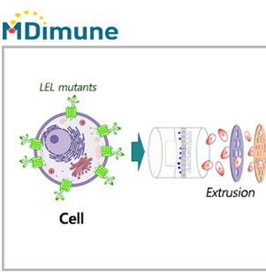 MDimune and Evercyte form partnership for developing tumor-targeting EVs
