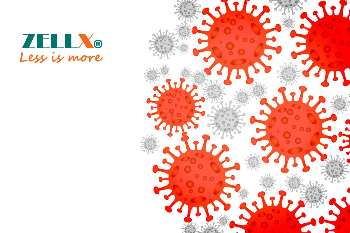 ZELLX® real time qPCR SARS-CoV-2 detection and extraction kits